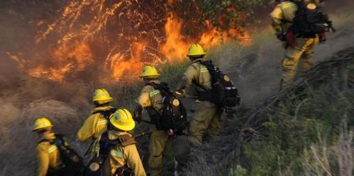 75-ha-hutan-di-kawasan-gunung-andong-terbakar