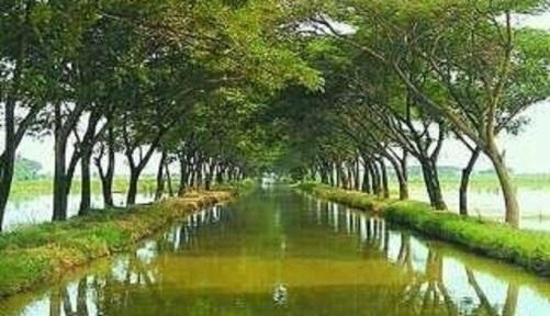 sungai-bladon1