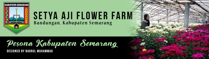 setya aji flower farm by badrulmuhammad