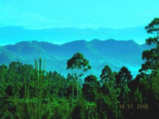 gunung patuha gunung tertinggi di jawa barat
