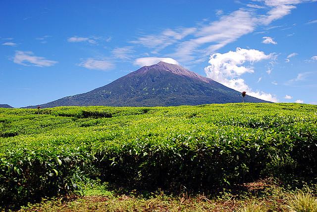 7 gunung tertinggi di Indonesia gunung kerinci