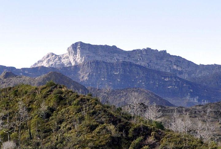 7 gunung tertinggi di Indonesia puncak trikora