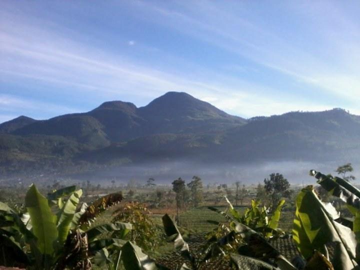 gunung tertinggi di jawa tengah - Gunung Rogojembangan
