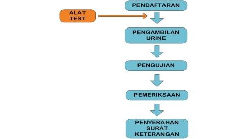 prosedur pembuatan surat keterangan bebas narkoba (SKBN)