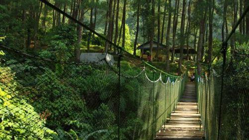 Tempat Wisata di Bogor Yang Murah Meriah Suaka Elang Loji