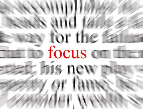 Fokus Pada Satu Peluang Bisnis